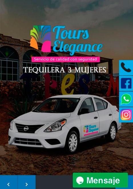 pagina_web_tours_elegance_graficoshp
